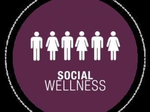 wellness_1 (1)