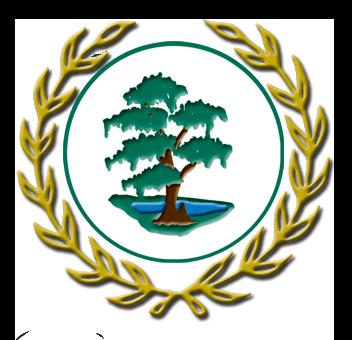 80969 Naples logo